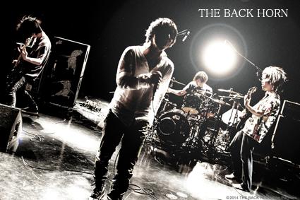 all_thebackhorn.jpg
