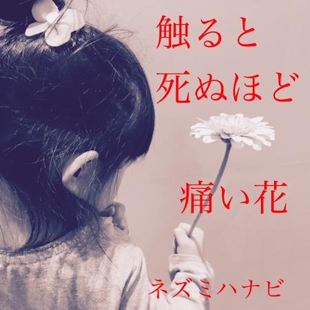 http://rooftop.cc/news/2017/02/03/sawaruto.jaket.small.JPG