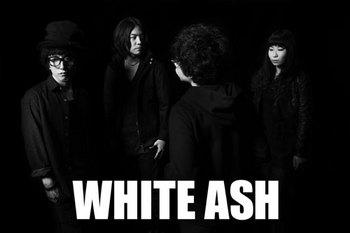 WHITE-ASH_new.jpg