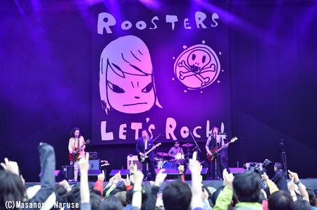 roosters_c.jpg