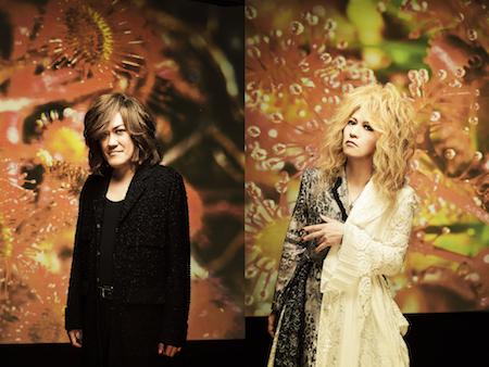 kitsutaka_honjo_s.jpg