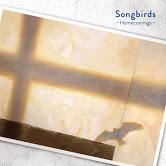 Homecomings、映画『リズと青い鳥』主題歌となった新曲「Songbirds」MV公開! 山田尚子監督からのコメントも到着!
